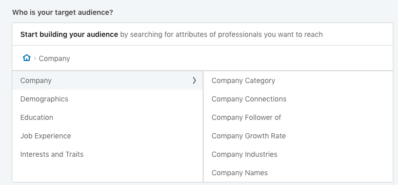 LinkedIn-Ads-Target-Audience-Survey